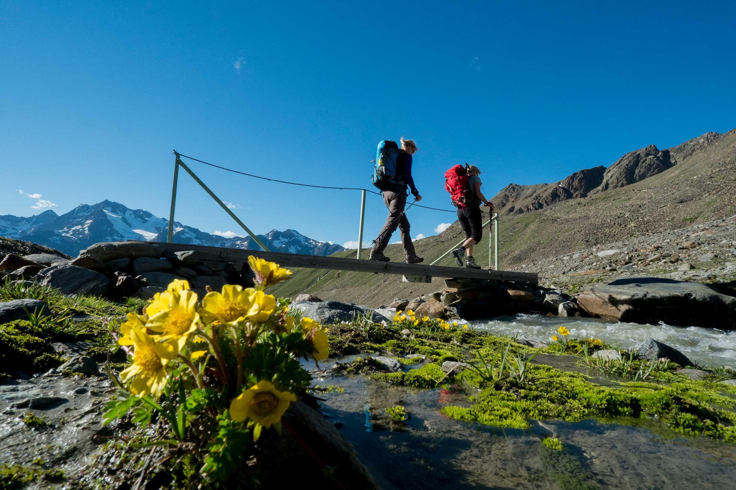 Wanderer am Ramoljoch - Ötztaler Gletscherflohmarsch
