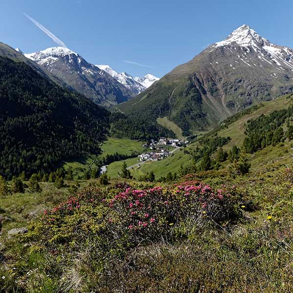 Blick auf sommerliches Vent - Ötztaler Gletscherflohmarsch
